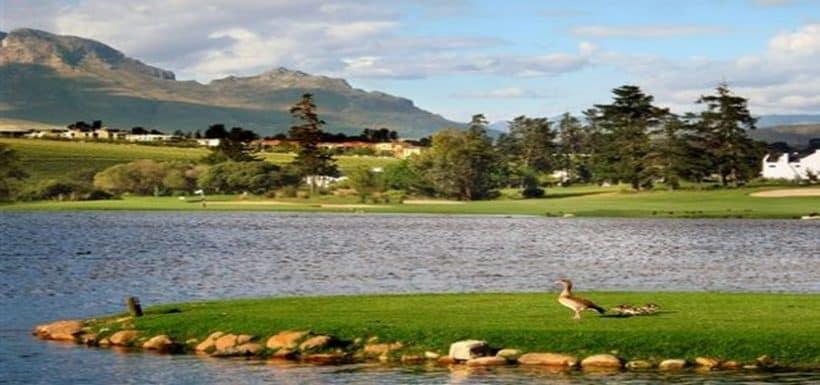 De Zalze Stellenbosch 2