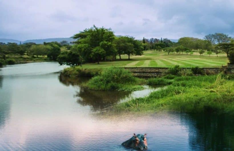 Sabie River 2